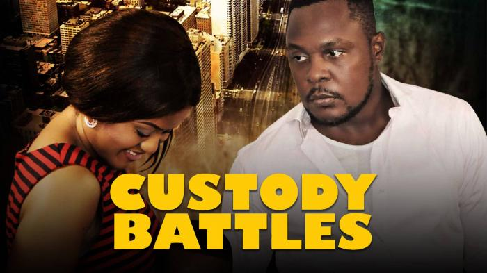 Custody Battles