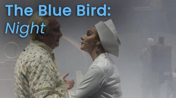 Image illustrating The Blue Bird (Night) rental
