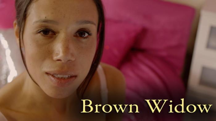 Image illustrating Brown Widow rental
