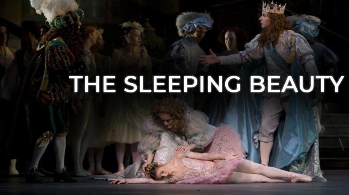Image illustrating The Sleeping Beauty rental