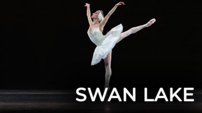 Image illustrating Swan Lake rental